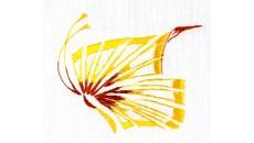 Individual Design B-99004